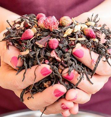 Cursos de tea blender